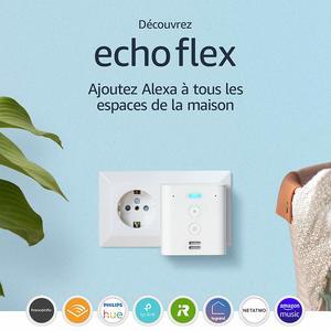 Amazon Echo Flex